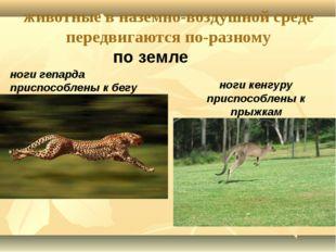 животные в наземно-воздушной среде передвигаются по-разному по земле ноги геп