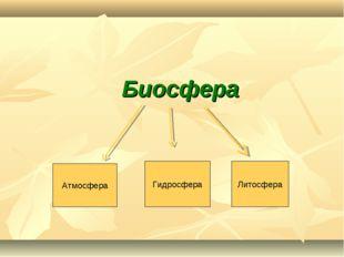 Биосфера Атмосфера Гидросфера Литосфера