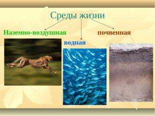 Среды жизни Наземно-воздушная почвенная водная