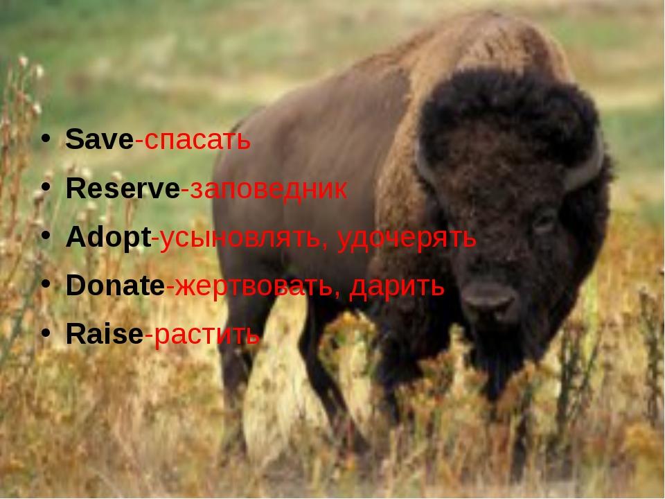 Save-спасать Reserve-заповедник Adopt-усыновлять, удочерять Donate-жертвовать...