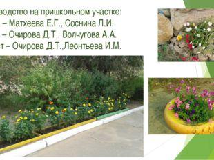 4. Руководство на пришкольном участке: июнь – Матхеева Е.Г., Соснина Л.И. июл