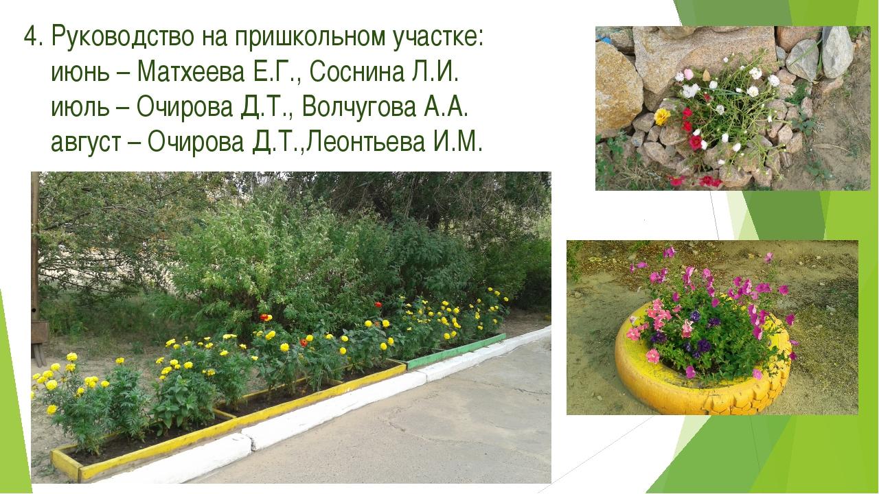 4. Руководство на пришкольном участке: июнь – Матхеева Е.Г., Соснина Л.И. июл...