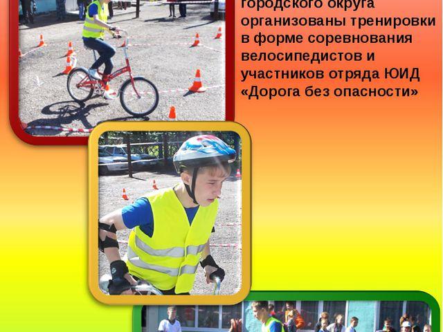 Под таким названием совместно с сотрудниками ГИБДД и ДОСААФ Анжеро-Судженско...