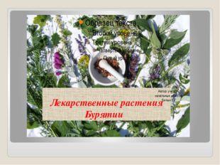 Лекарственные растения Бурятии Автор: учитель начальных классов: Белых Е.Г