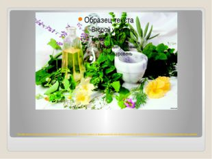 Лекарственные растения, обширная группа растений, используемых в медицинской