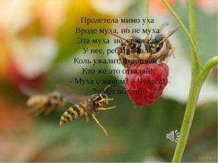 Пролетела мимо уха Вроде муха, но не муха Эта муха не жужжала У нее, ребята,