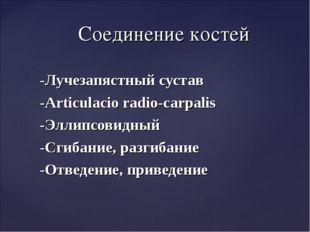 -Лучезапястный сустав -Articulacio radio-carpalis -Эллипсовидный -Сгибание, р