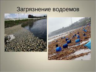 Загрязнение водоемов