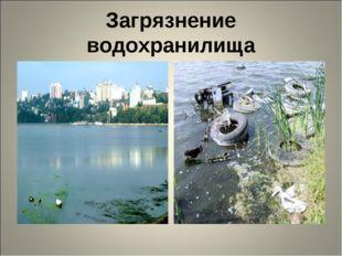 Загрязнение водохранилища