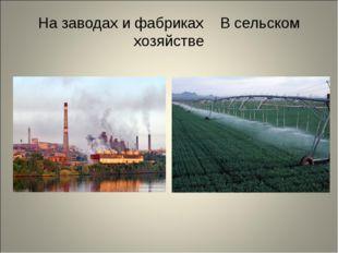 На заводах и фабриках В сельском хозяйстве