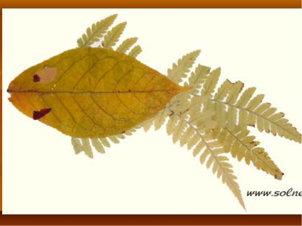 Как сделать из листьев узоры