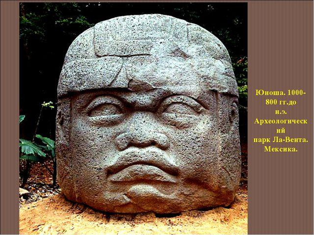 Юноша. 1000-800 гг.до н.э. Археологический парк Ла-Вента. Мексика.