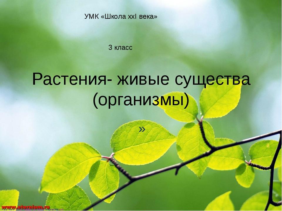 Растения- живые существа (организмы) » УМК «Школа ххI века» 3 класс