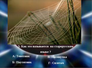 5. Как это называется на старорусском языке ? А: Тенетник Б: Паутятник В: Нат