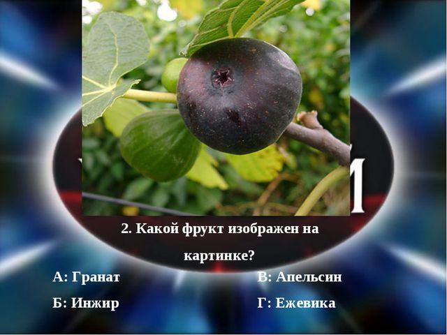 2. Какой фрукт изображен на картинке? Б: Инжир А: Гранат Г: Ежевика В: Апельсин