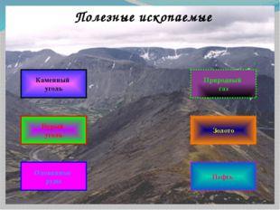 Полезные ископаемые Нефть Оловянные руды Бурый уголь Каменный уголь Золото Пр