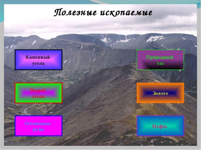 Полезные ископаемые Нефть Оловянные руды Бурый уголь Каменный уголь Золото Пр...