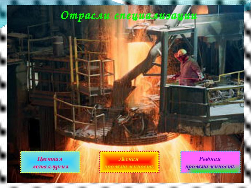 Отрасли специализации Цветная металлургия Лесная промышленность Рыбная промыш...