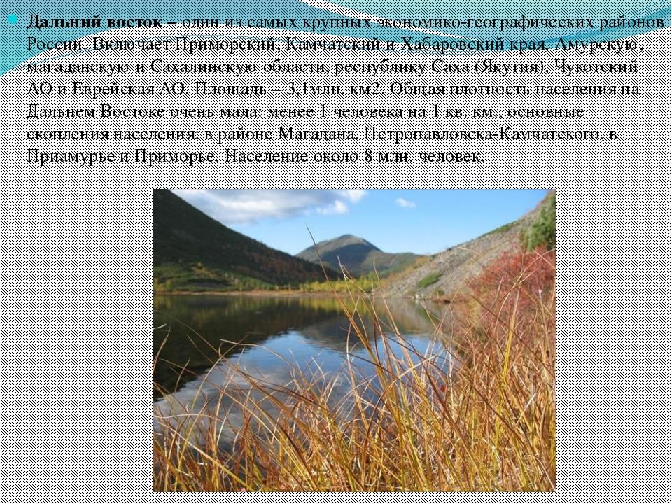 Дальний восток – один из самых крупных экономико-географических районов Росси...