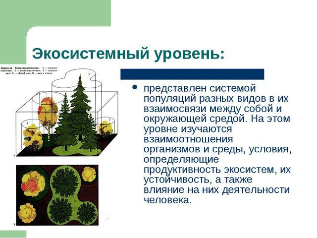 Экосистемный уровень: представлен системой популяций разных видов в их взаимо...