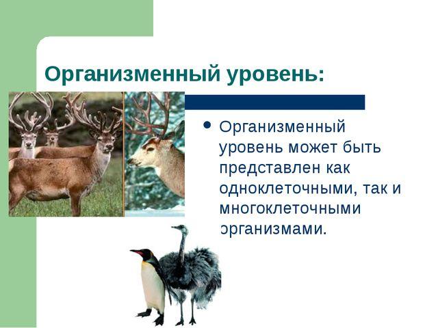 Организменный уровень: Организменный уровень может быть представлен как однок...