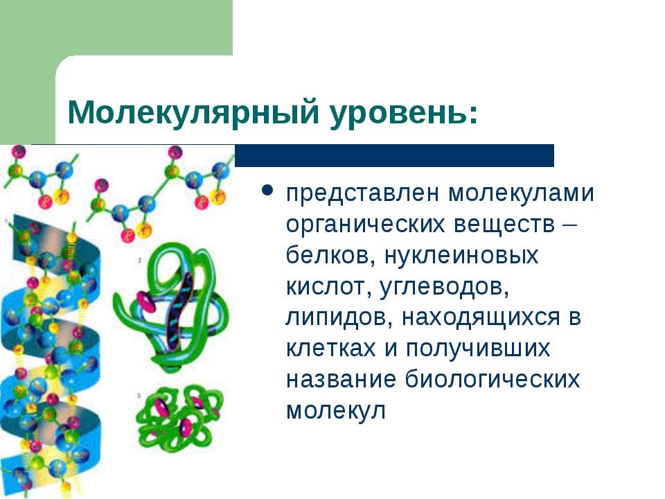 Молекулярный уровень: представлен молекулами органических веществ – белков, н...