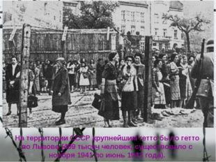 На территории СССР крупнейшим гетто было гетто во Львове (409 тысяч человек,