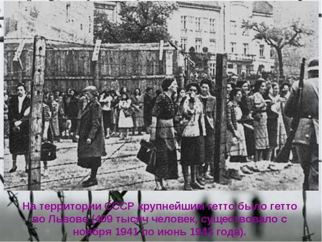 На территории СССР крупнейшим гетто было гетто во Львове (409 тысяч человек,...