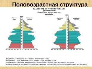 Половозрастная структура Мальчиков рождается чуть больше, чем девочек (на 100