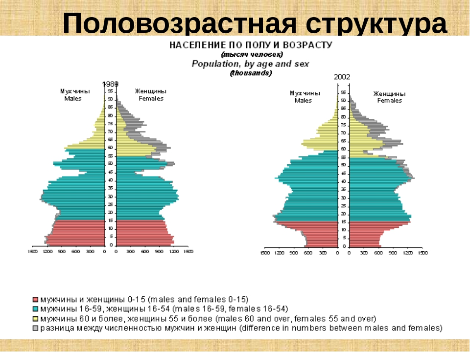 Половозрастная структура Мальчиков рождается чуть больше, чем девочек (на 100...