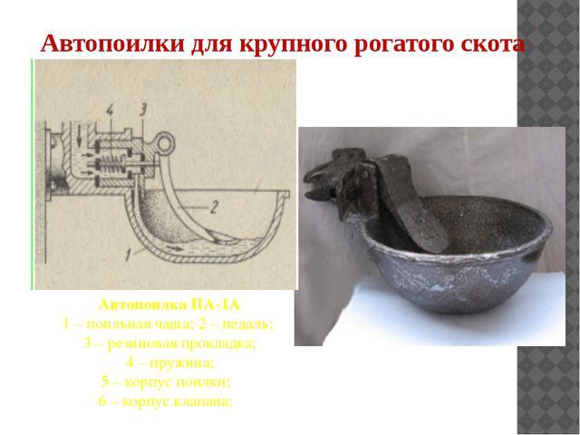 Автопоилка ПА-1А 1 – поильная чаша; 2 – педаль; 3 – резиновая прокладка; 4 –...