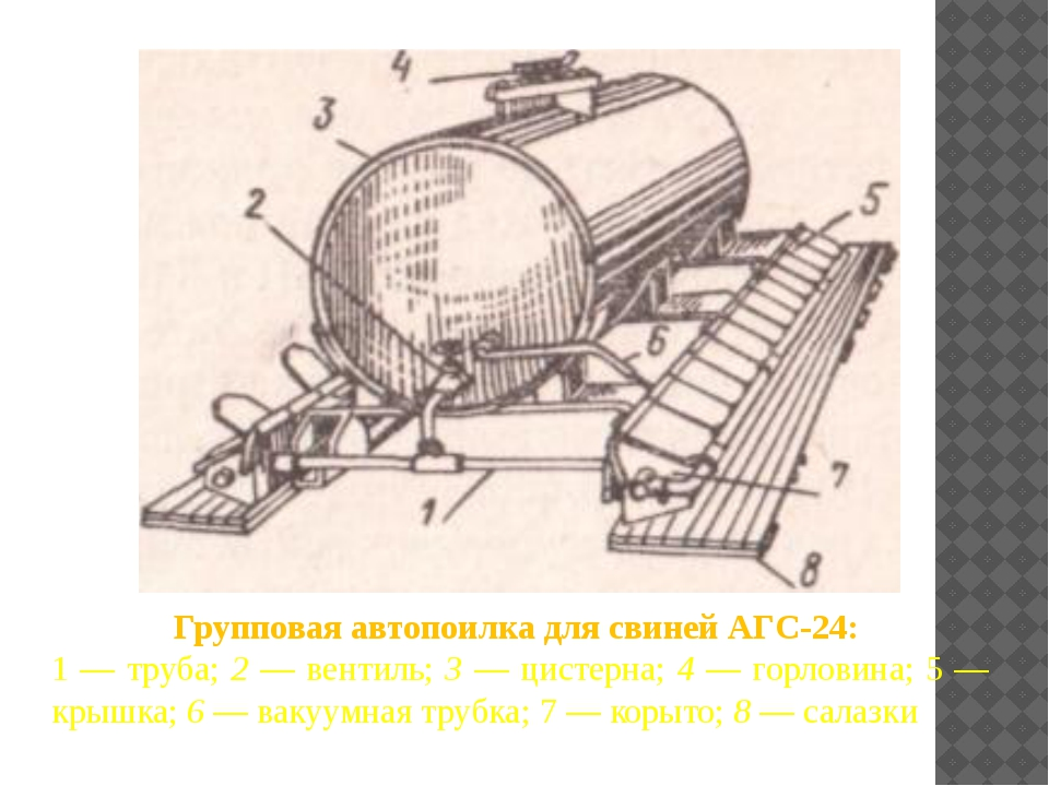 Групповая автопоилка для свиней АГС-24: 1 — труба; 2 — вентиль; 3 — цистерна;...