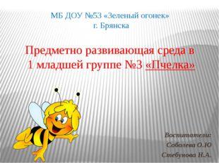 Предметно развивающая среда в 1 младшей группе №3 «Пчелка» Воспитатели: Собол
