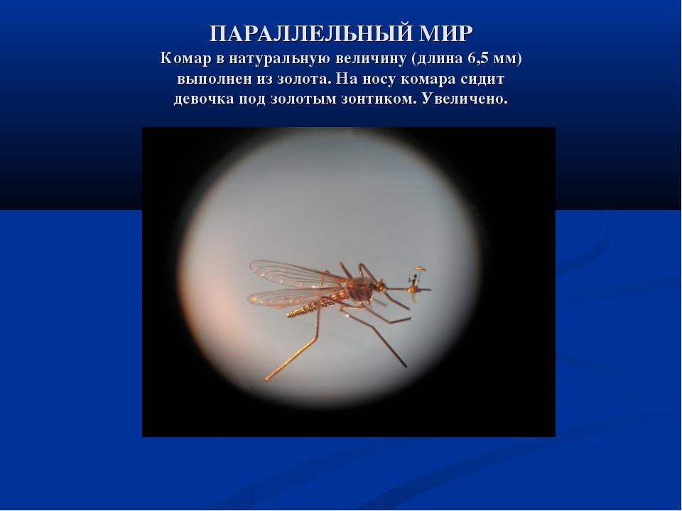 ПАРАЛЛЕЛЬНЫЙ МИР Комар в натуральную величину (длина 6,5 мм) выполнен из золо...