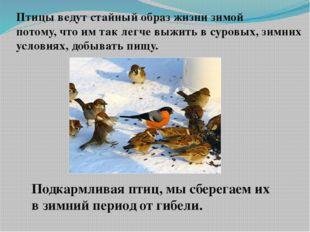 Птицы ведут стайный образ жизни зимой потому, что им так легче выжить в суров