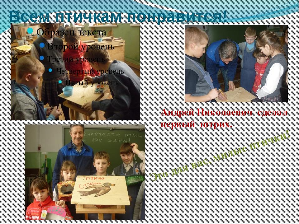 Всем птичкам понравится! Андрей Николаевич сделал первый штрих. Это для вас,...