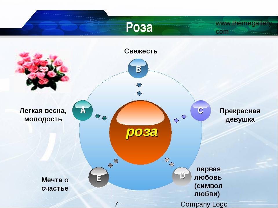 Роза Свежесть первая любовь (символ любви)