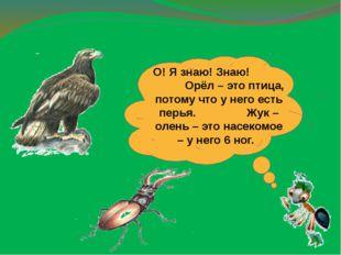 О! Я знаю! Знаю! Орёл – это птица, потому что у него есть перья. Жук – олень