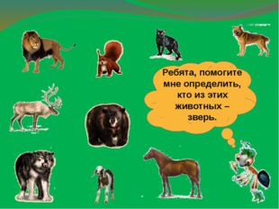 Ребята, помогите мне определить, кто из этих животных – зверь.
