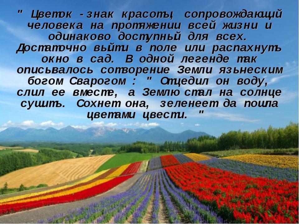""""""" Цветок -знак красоты, сопровождающий человека на протяжении всей жизни и од..."""