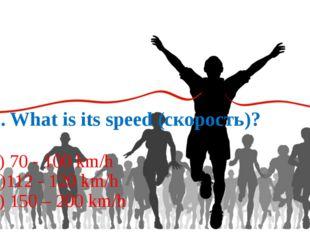 2. What is its speed (скорость)? a) 70 - 100 km/h b)112 - 120 km/h c) 150 –