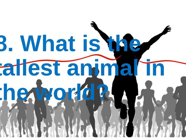 8. What is the tallest animal in the world?
