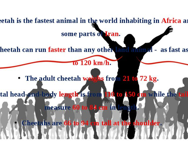 Cheetah is the fastest animal in the world inhabiting in Africa and some part...