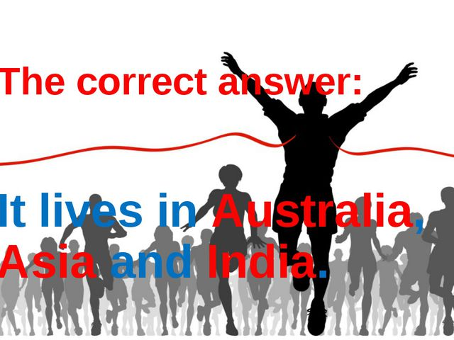 The correct answer: It lives in Australia, Asia and India.