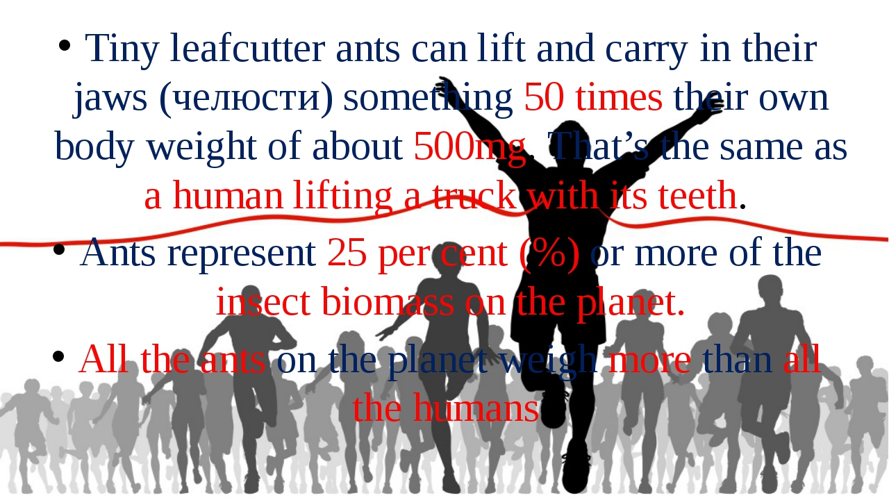 Tiny leafcutter ants can lift and carry in their jaws (челюсти) something 50...