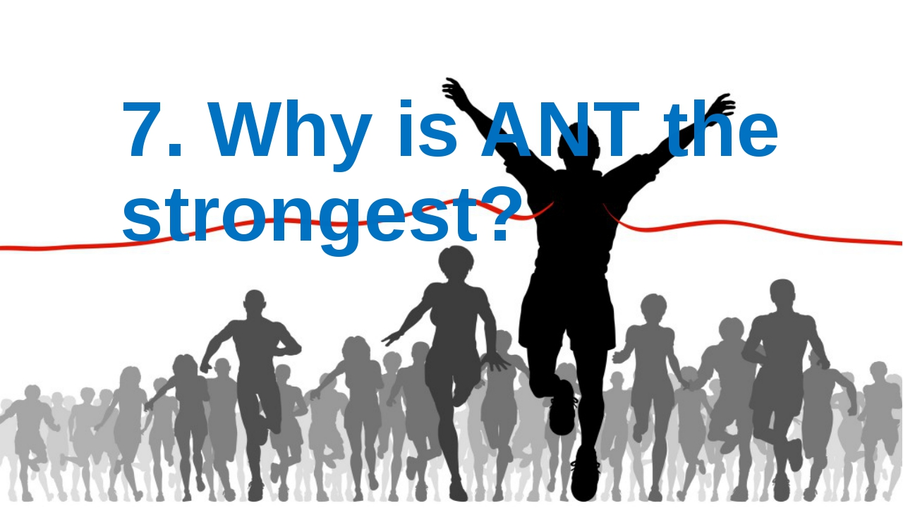 7. Why is ANT the strongest?