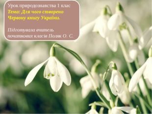 Урок природознавства 1 клас Тема: Для чого створено Червону книгу України. П