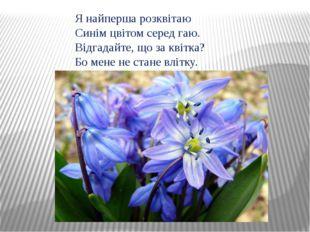 Я найперша розквітаю Синім цвітом серед гаю. Відгадайте, що за квітка? Бо мен