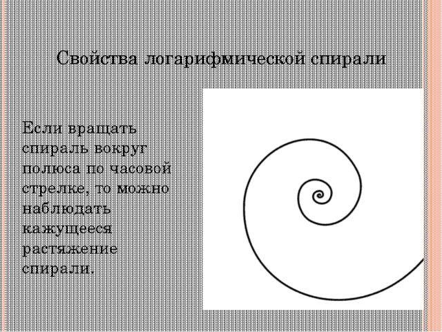 Логарифмическая спираль в природе По логарифмическим спиралям закручены многи...