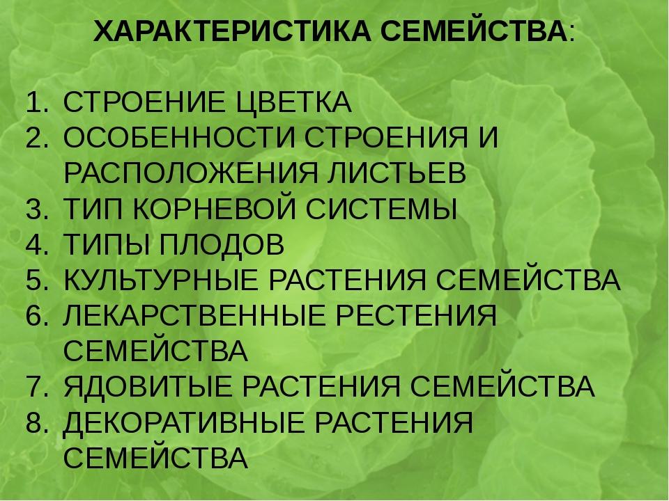 ХАРАКТЕРИСТИКА СЕМЕЙСТВА: СТРОЕНИЕ ЦВЕТКА ОСОБЕННОСТИ СТРОЕНИЯ И РАСПОЛОЖЕНИ...